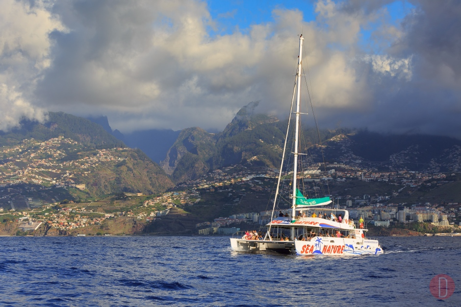 Funchal,Cata,maran